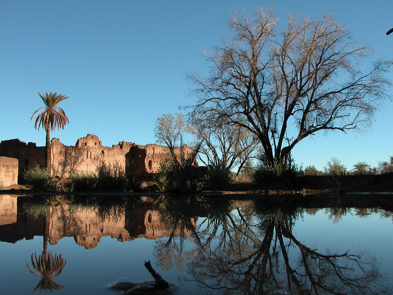 Old Ksar reflections, Skoura, Morocco.